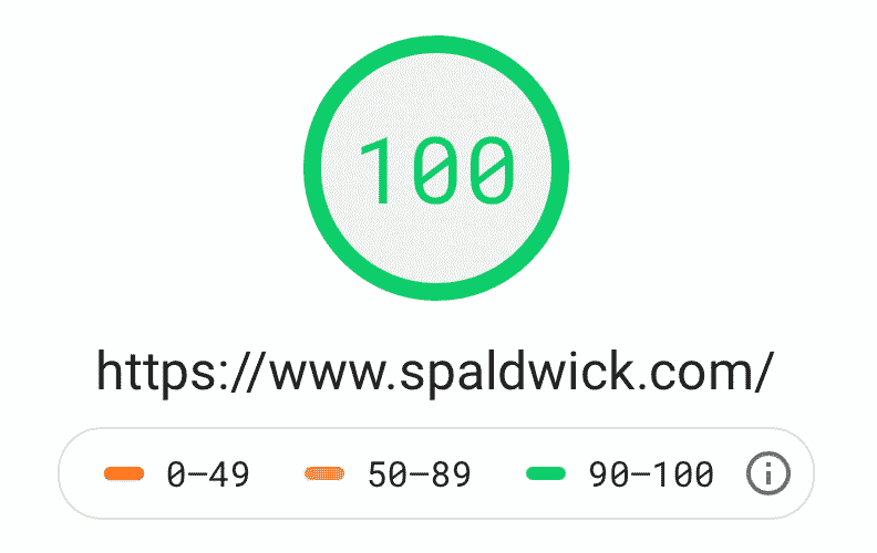 Website performance assessment showing 100%